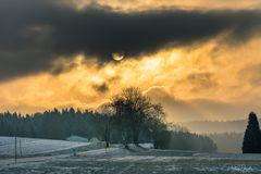 Nebel:Sonne