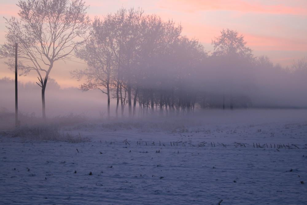 Nebelspalt