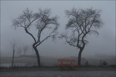 Nebelstimmung.