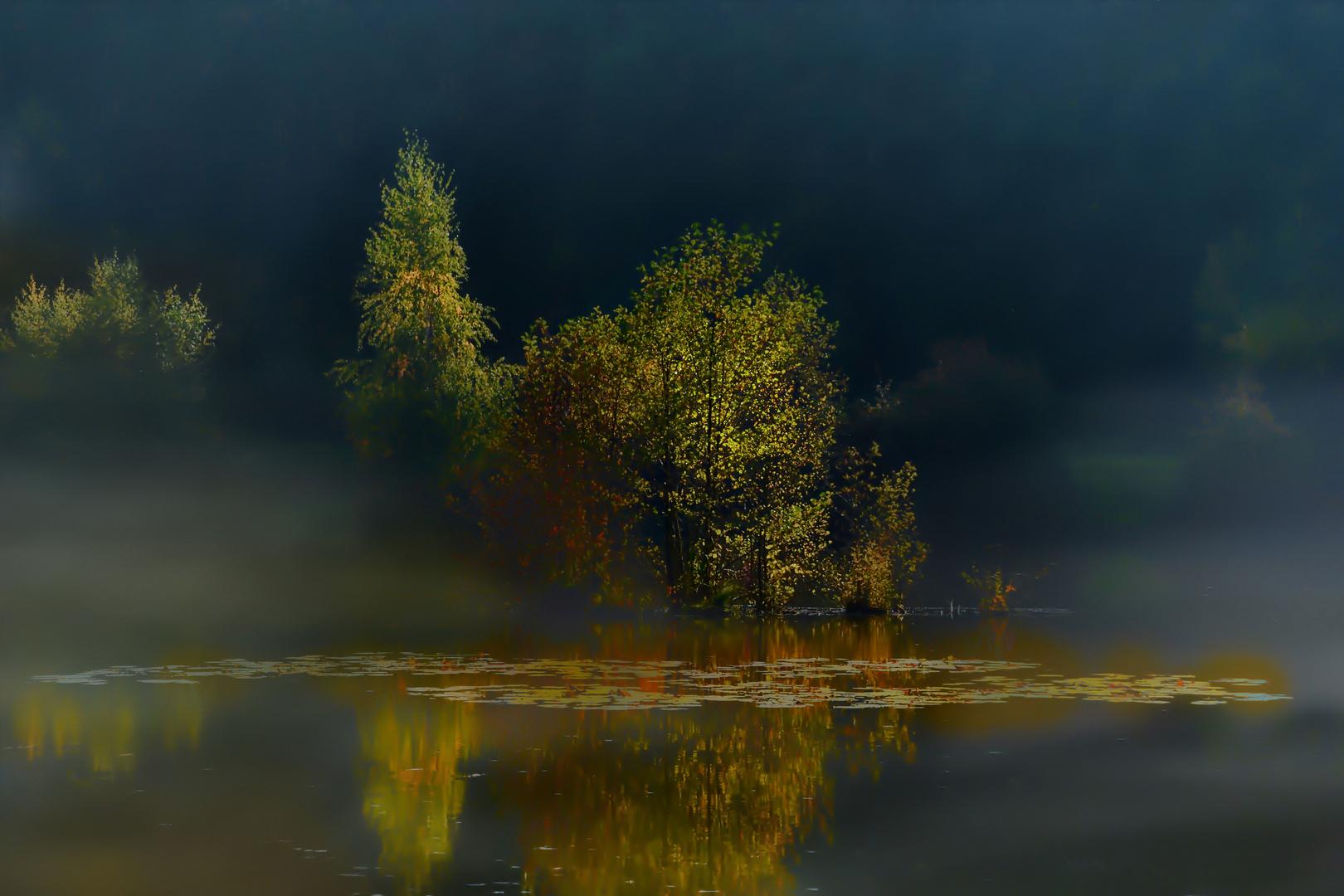 Nebelstimmung am Bergsee