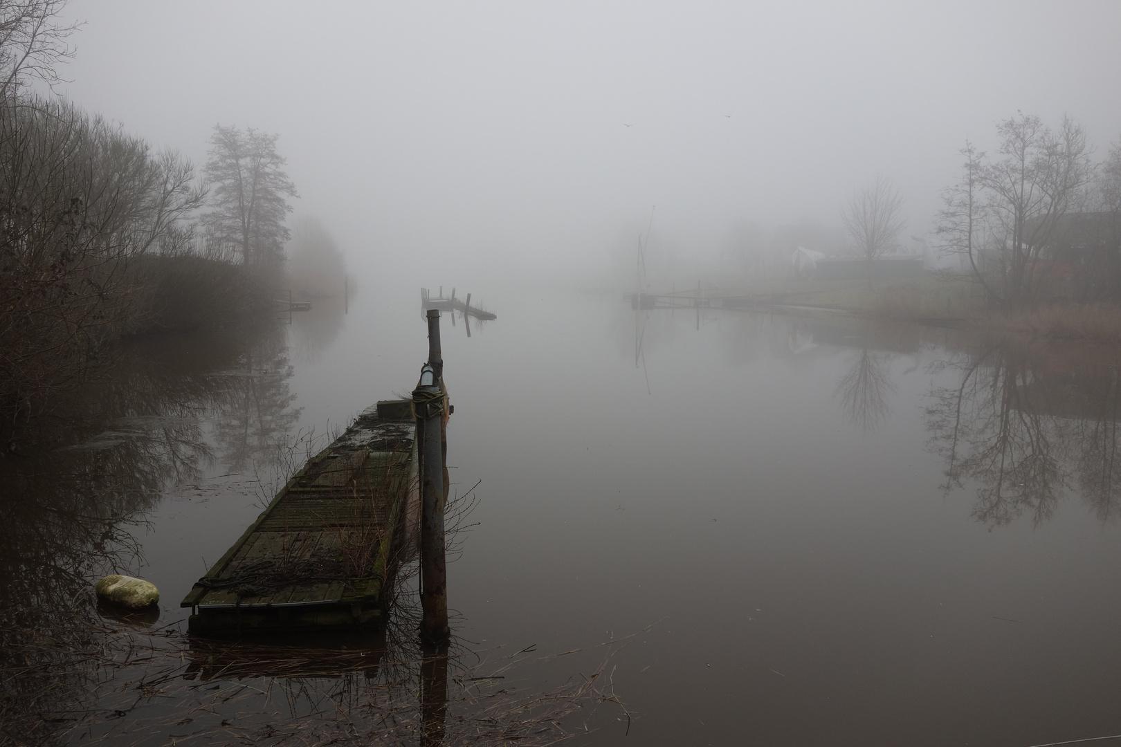 Nebelstimmung am Rüstersieler Hafen