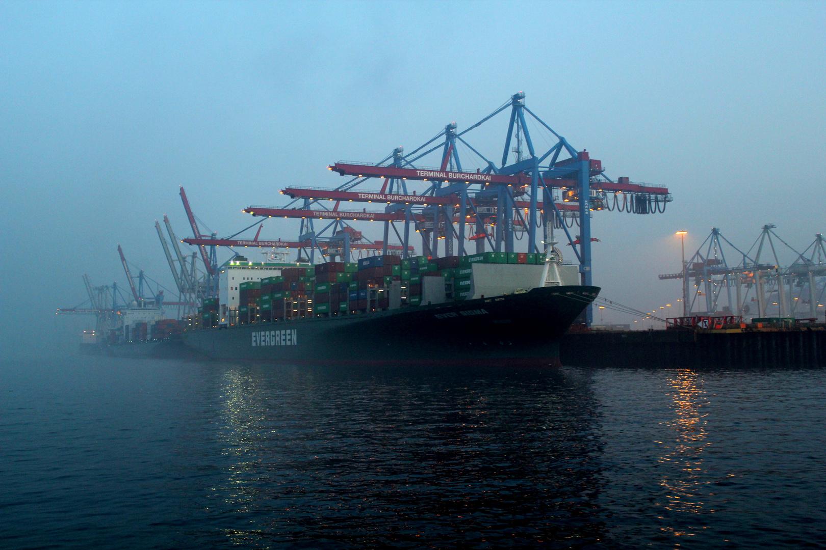 Nebelstimmung auf der Elbe
