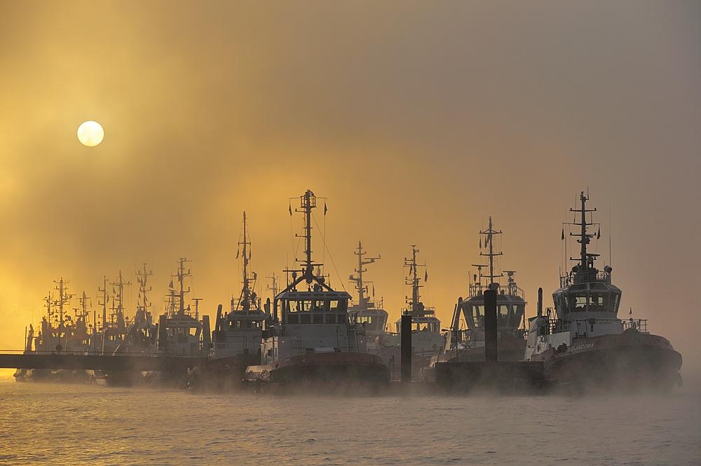 Nebelstimmung im Hafen