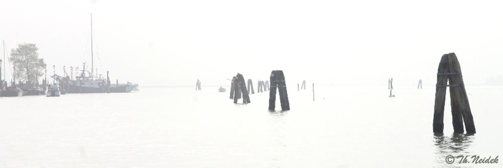Nebelstimmung in der Lagune