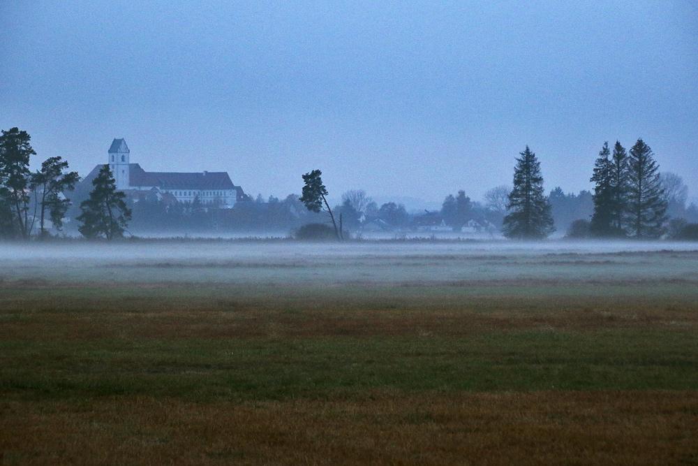 Nebelstimmung in Richtung Bad Buchau