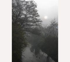 Nebelstimmung Waibstadt