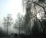 Nebeltage im November - Fog day in November