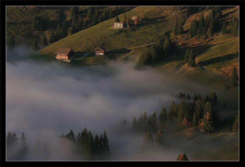 Nebelwand...