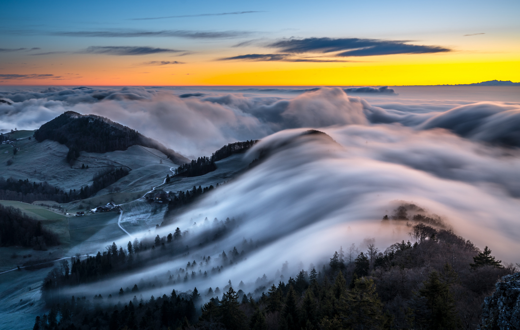 Nebelwelle