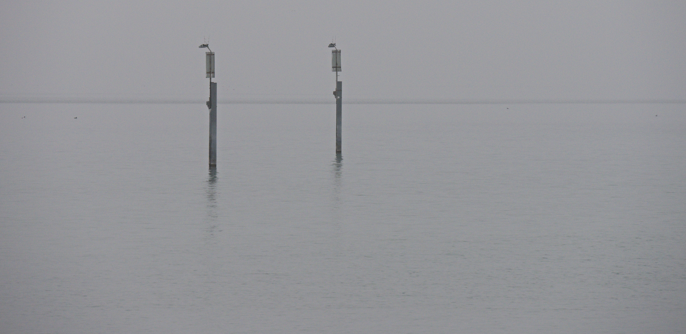 Neblig am Bodensee