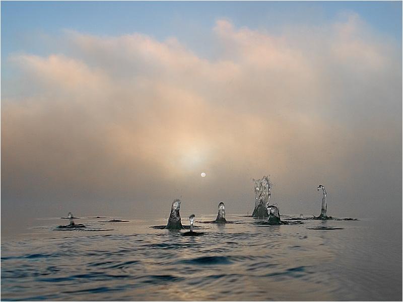 Nebliger Morgen am See