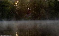 """nebliger Sonnenaufgang in der Heide"""