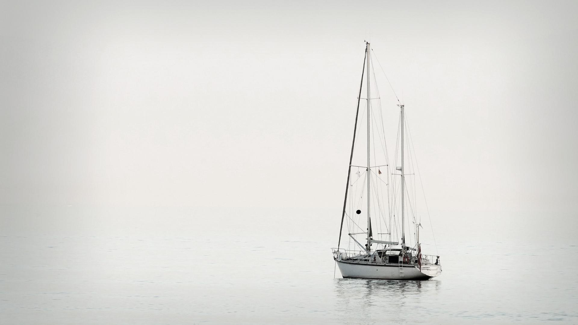Neblina en la bahía
