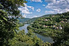 Neckar bei Heidelberg 4