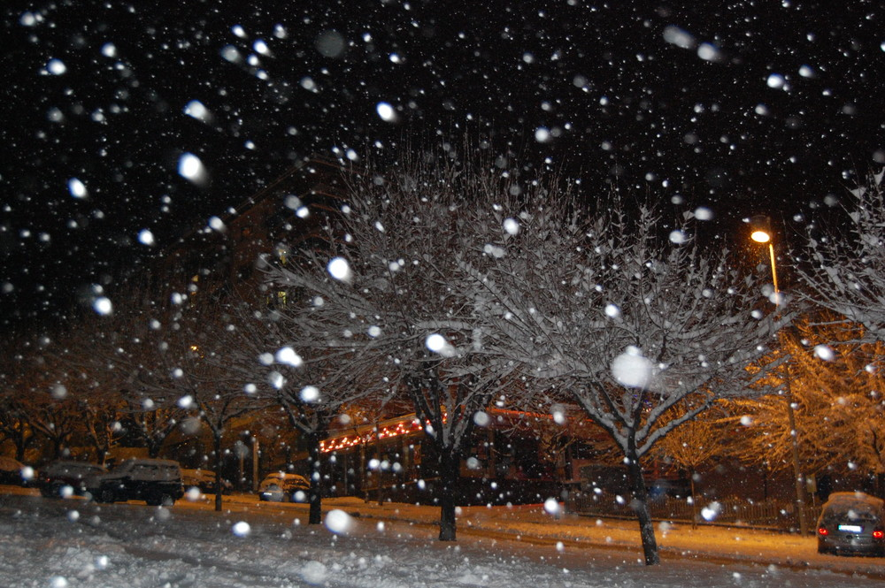 neige dans la nuit photo et image paysages nature images