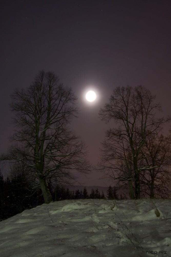 Neige et pleine Lune