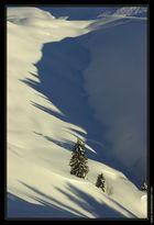 Neige et soleil de decembre - decembre 2007