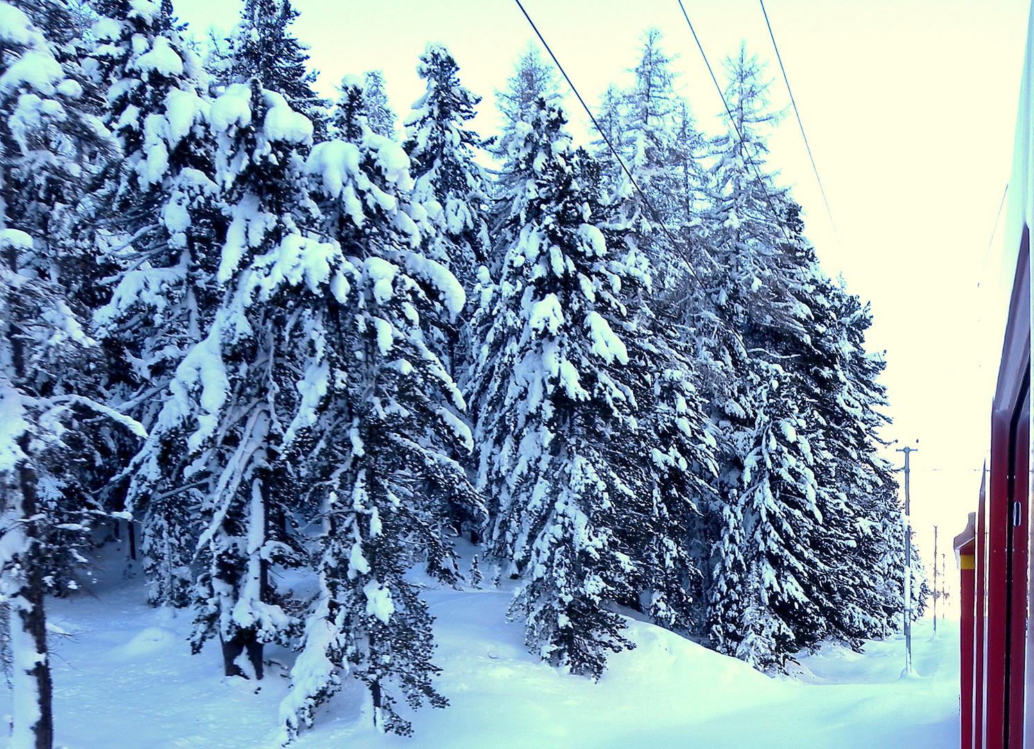 neige..neige / nieve..nieve / Schnee..Schnee..01