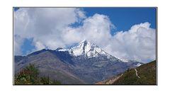 neiges eternelles des alpes