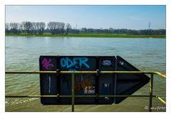 Nein, die Oder ist es nicht - es ist der Rhein