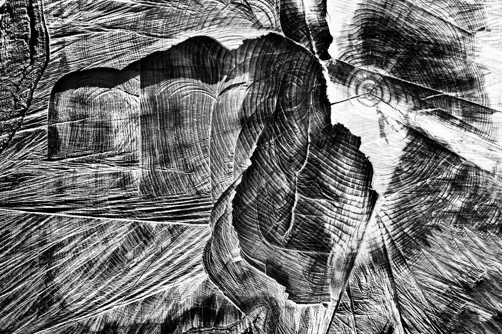 Nel tronco
