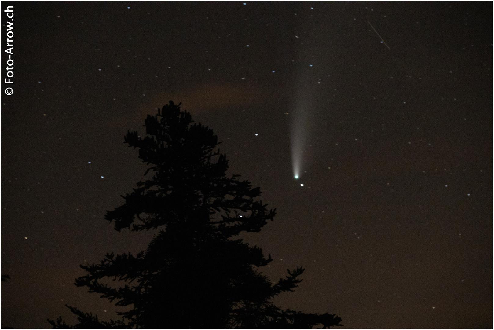 Neowiese und ein Meteor....