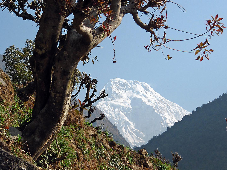 """Nepal: Trekkingtour- Immer im Bild, die Hochgebirgskette mit den """"Achttausendern"""""""