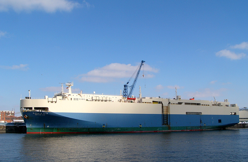 NEPTUN ACE im Kuhwerder Hafen/Hamburg