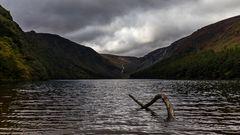 Nessie of Glendalough