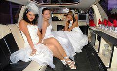 Nette Braut- Modelle