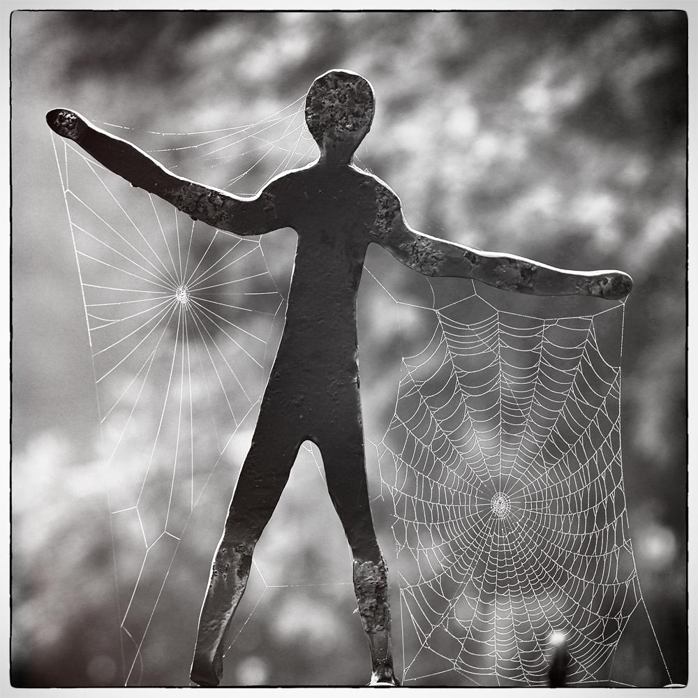 Netz.Träger