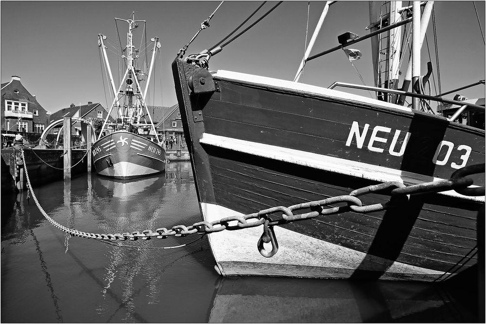 """"""" NEU 03 """""""