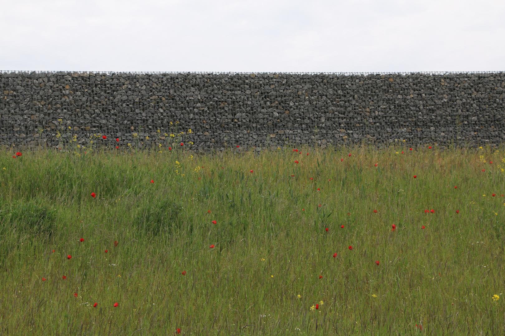 NEU - Die Mauer