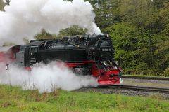 """""""Neubaulok"""" 99 7234 der Harzer Schmalspurbahn"""
