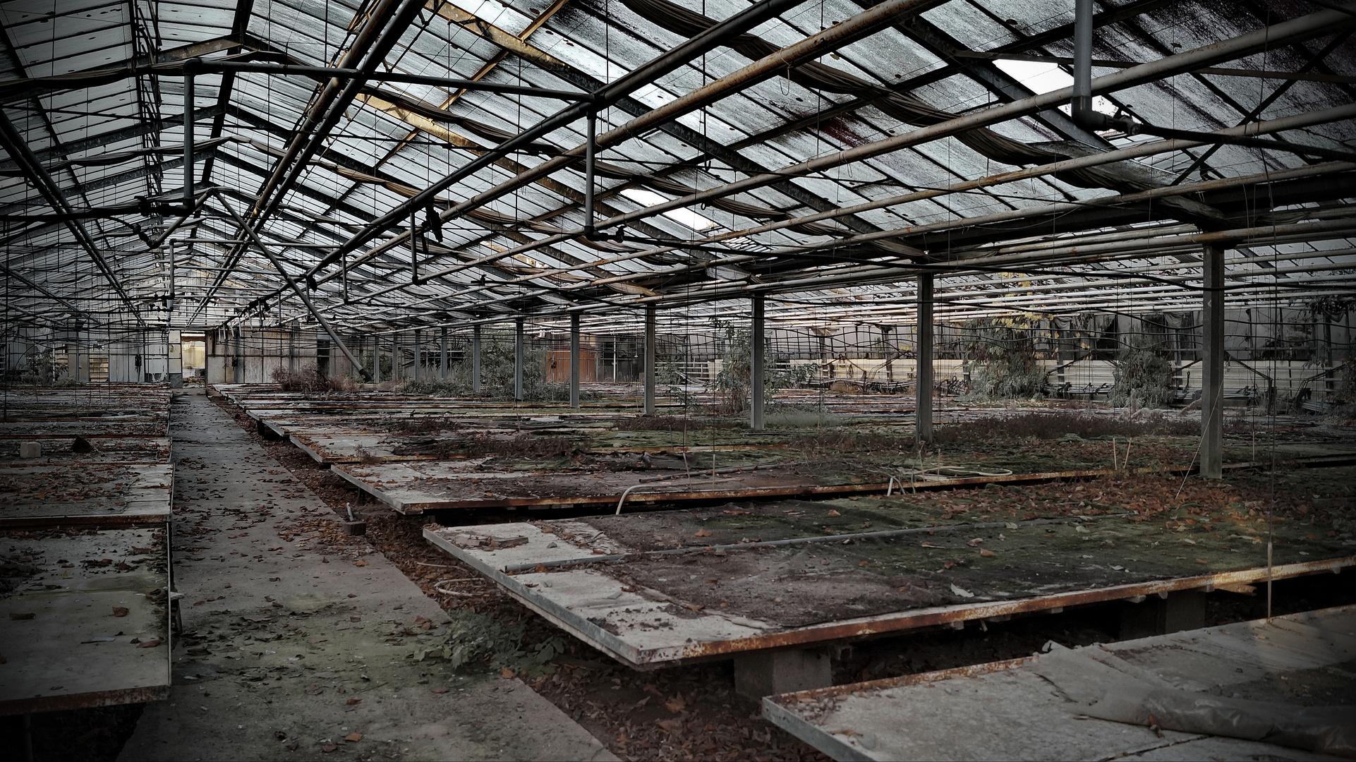 Neubepflanzung - Garzweiler II