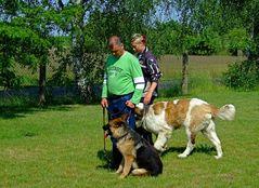 Neues Hundefräulein Mira***Hermann scheint sie zu gefallen*