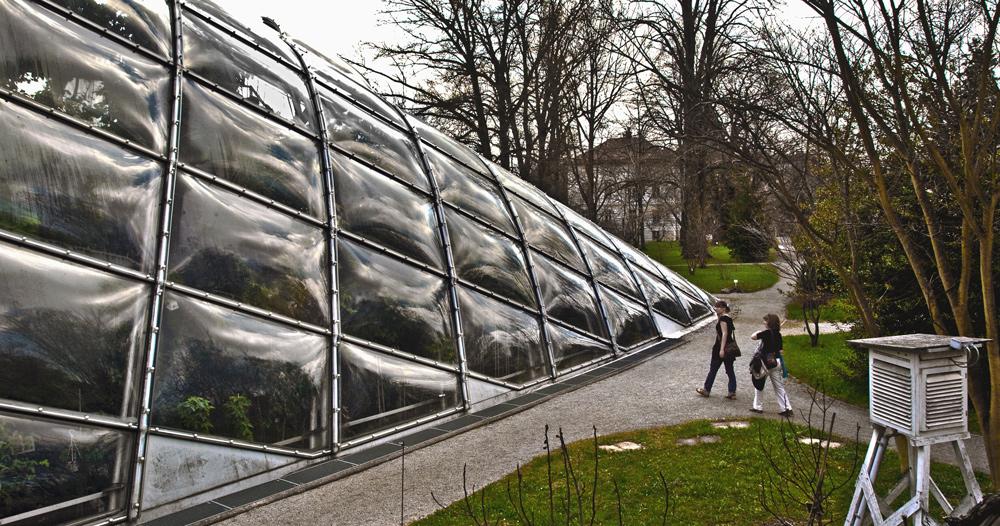 Neues Treibhaus im botanischen Garten in Graz!