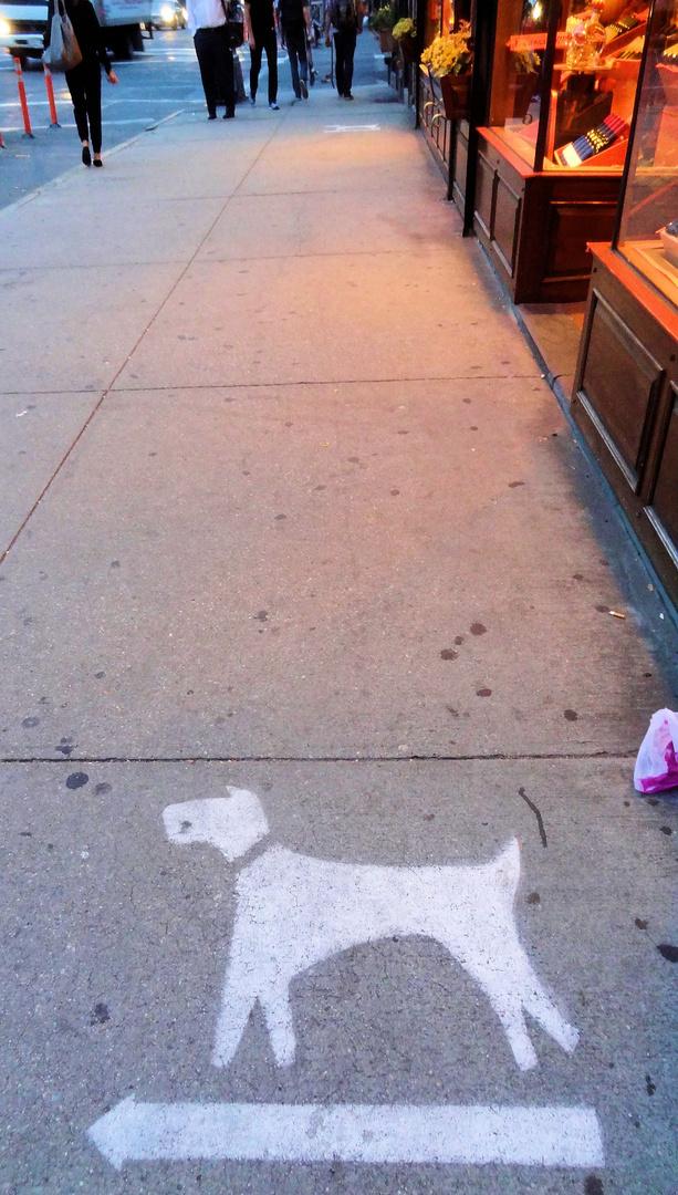 neues 'verkehrszeichen' in new york