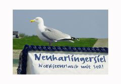 Neuharlingersiel- Urlaub mit Stil