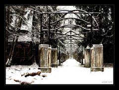 Neujahr in Beelitz