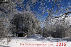 Neujahres wünsche