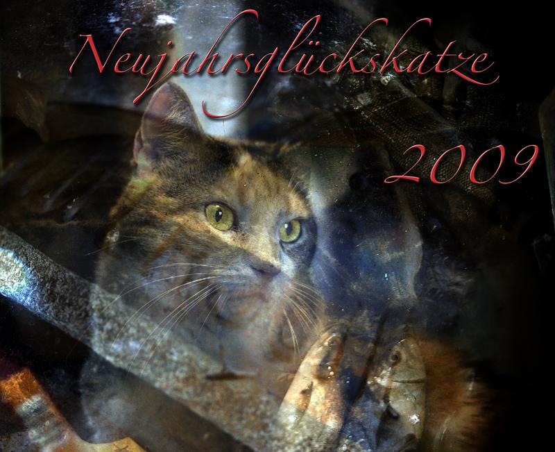 Neujahrsglückskatze 2009