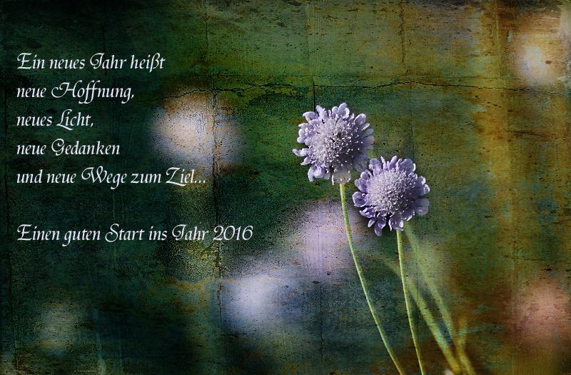 Neujahrswunsch Foto & Bild | gratulation und feiertage, wünsche ...
