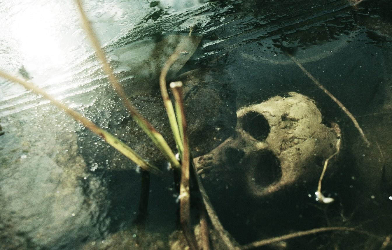 [ neulich, als wieder mal jemand in meinen Teich fiel... ]