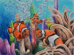 Neulich - am Korallenriff...