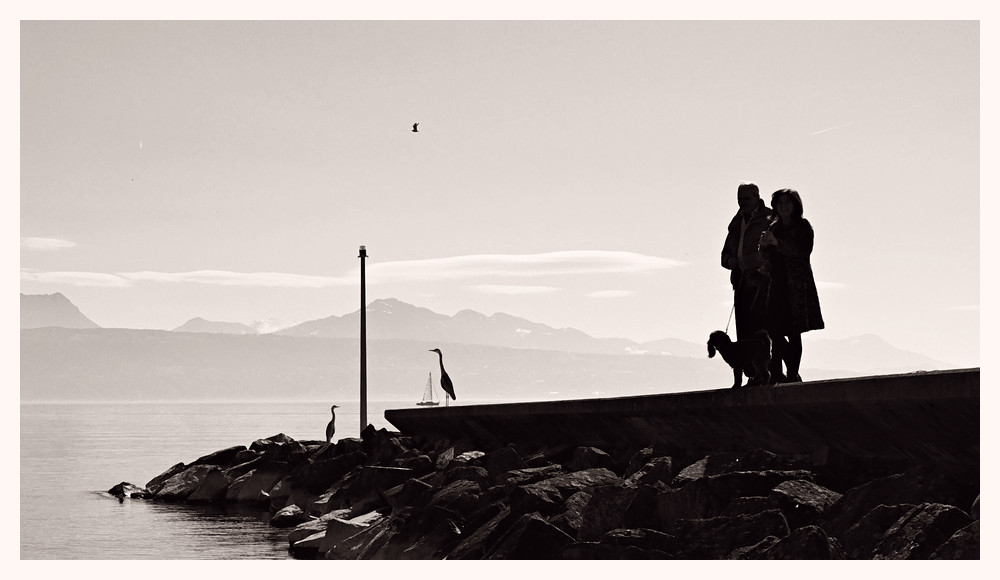 Neulich am See