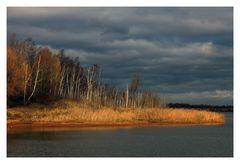 Neulich am Ufer des Sees...
