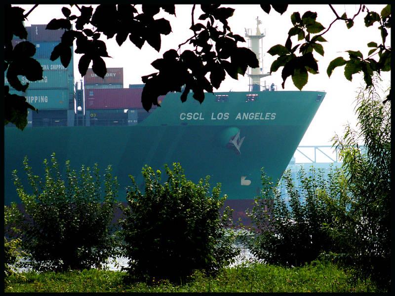 Neulich auf der Elbe