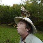 neulich bei der Schmetterlingsjagd....