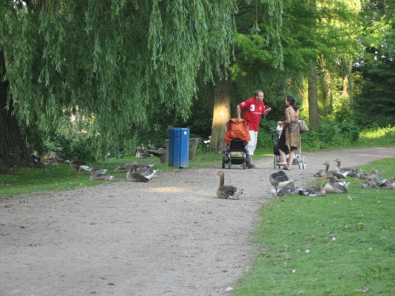 neulich im Park